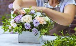 Florista profesional de Timelapse que arregla la composición de la flor en caja de madera en estudio del diseño floral foto de archivo
