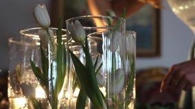 Florista Puts tulipas brancas aos vasos de vidro claros video estoque
