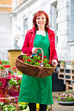 Florista que entrega la cesta de flores o de viola Imágenes de archivo libres de regalías