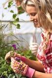 Floristas imagen de archivo libre de regalías