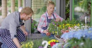 Floristas jovenes que trabajan afuera almacen de video