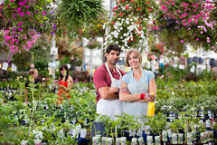 Floristas na estufa Foto de Stock Royalty Free
