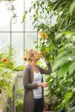 Floristenfrau, die im Gewächshaus arbeitet Lizenzfreie Stockfotos
