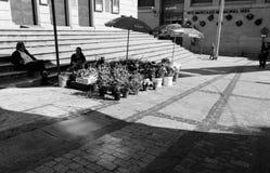 Floristería en la calle fotografía de archivo