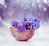 Floristic σύνθεση με τις βιολέτες και forget-me-not τα λουλούδια με λίγα λόγια στο όμορφο κλίμα bokeh Στοκ φωτογραφίες με δικαίωμα ελεύθερης χρήσης