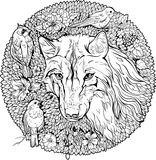 Floristic coloring page. wolf and birds Stock Images