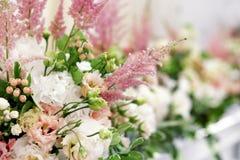 Floristic composition Stock Photo