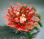 Floristic composition. Of decorative flowers Royalty Free Stock Image