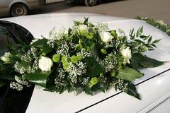 Floristic composition. Of decorative flowers Stock Image