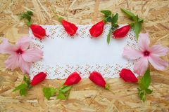 Floristic composition - postcard. Royalty Free Stock Image