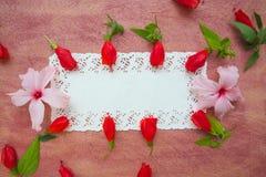 Floristic composition - postcard. Stock Photography
