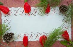 Floristic composition - postcard. Royalty Free Stock Photos