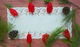 Floristic compositon of hibiscus flowers and pine tree twigs - postcard. Royalty Free Stock Image