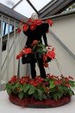 Floristic dekor och attrapp för Calla lilly i blommaväxthuset, Keuk Arkivfoton