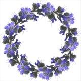 Floristic dekorativ vektorram av blåa vildblommor royaltyfri illustrationer