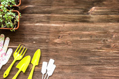 Floristic tools set on wooden table above view Royalty Free Stock Photo