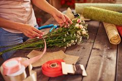 Floristic Royalty Free Stock Photography