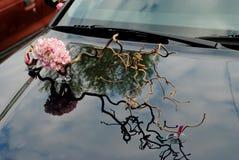 Floristics. Гвоздика и sprig hazel на клобуке стоковое фото rf