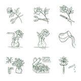 Floristische Vectorpictogrammen Royalty-vrije Stock Foto