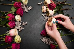 Floristry σχέδιο δημιουργιών τέχνης σύνθεσης ανθοδεσμών στοκ εικόνες με δικαίωμα ελεύθερης χρήσης