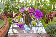 Floristry Pink and purple lotus flowers in glass vase. Royalty Free Stock Photo