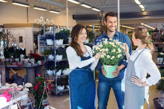 Florists Assisting Male Customer In Buying Flower Stock Image