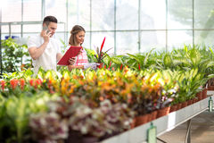 Florists check order list Stock Photography