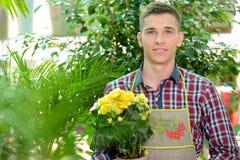 Florists Stock Photos
