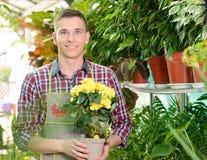 Florists Stock Image