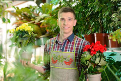Florists Stock Images