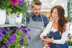 Florists Using Digital Tablet In Flower Shop. Male and female florists using digital tablet in flower shop Royalty Free Stock Images