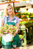 Florists woman working with flowers Stock Images