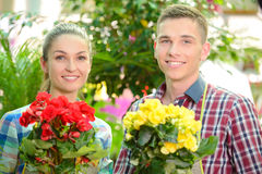 Florists. Young smiling florists men and women working in the greenhouse Stock Photos