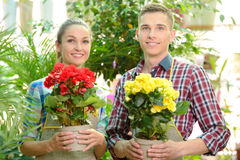 Florists. Young smiling florists men and women working in the greenhouse Stock Image