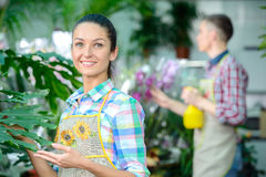 Florists. Young smiling florists men and women working in the greenhouse Royalty Free Stock Image