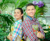 Florists. Young smiling florists men and women working in the greenhouse Royalty Free Stock Photos
