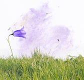 floror royaltyfri foto
