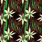 floror vektor illustrationer