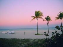 Floryda zdjęcie royalty free
