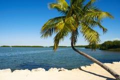 Floryda klucze Zdjęcia Stock