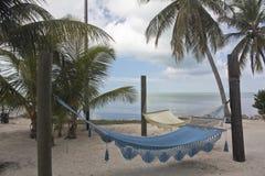 Floryda kluczy palmy 3 i hamak obrazy royalty free