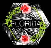 Floryda kwitnie plakat z czarnym tłem Zdjęcie Stock