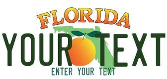 Floryda numerowy talerz obraz stock