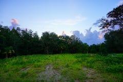 Floryda słońca setu chmura Obrazy Royalty Free