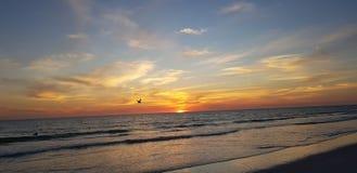 Floryda sjesty klucza zmierzchu plaża obrazy royalty free