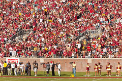 Floryda Stan Uniwersyteta Futbol Zdjęcia Stock
