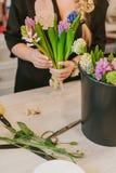 Flosist que trabaja con los jacintos, tomando medidas Imágenes de archivo libres de regalías