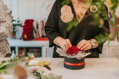 Flosist working with red roses, making arrangements. Royalty Free Stock Photo