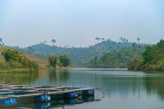 Floss im grünen See lizenzfreie stockbilder