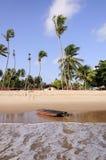 Floss Pititinga (RN Brasilien) auf dem Strand Lizenzfreie Stockbilder